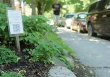 Plantcatching.com, la ressource commune des jardiniers du monde entier